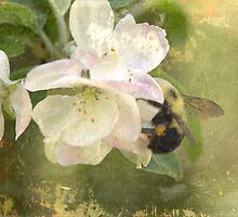 Apple Blossom Time - Bee Included by MotherNature2
