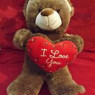 Valentines Day Teddy Bear by lenspiro