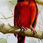 Cardinal Perched by Phyllis Beiser