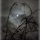 For the Love of the Moon by TrendleEllwood