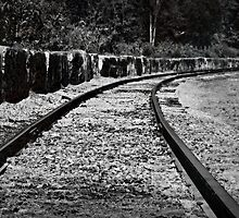 Following the train tracks by Scott Mitchell