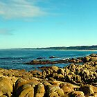 Salmon rocks, Marlo, Lakes entrance, panoramic by Glen Johnson