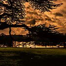 Golden Glow by JEZ22