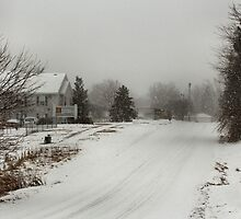 Snowy way home by Keala