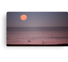 Surfers & Seagulls under a Pacific Ocean Moonset Canvas Print