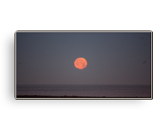Pacific Ocean Moon-set Canvas Print