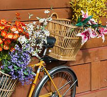 Yellow Bicycle with Baskets of Flowers by SunshineL