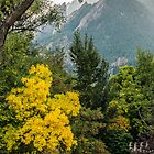 Fall For The Flatirons by Gregory J Summers