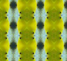 """""""Yellow Tanga"""" by Carter L. Shepard by echoesofheaven"""
