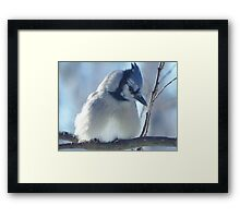 Feeling Blue Framed Print