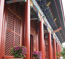 Chinese Temple by bourboulithra