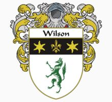 Wilson Coat of Arms / Wilson Family Crest by William Martin