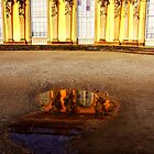 Castle Sanssouci Potsdam by Imi Koetz