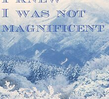 I Was Not Magnificent by positiver