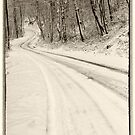 Winter Road by KellyHeaton