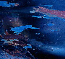 Swim in the Sea Abstract by Lee Craig