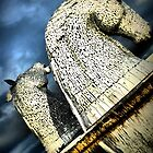 The Kelpies by Francis  McCafferty