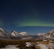 Northern Night Landscape by striberny