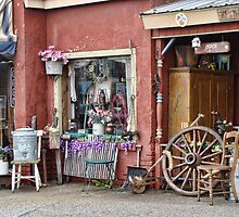 The antique shop by vigor