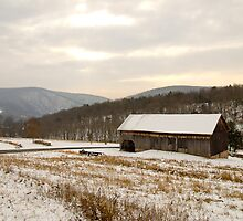 Wintry Farmland by Tom Gotzy