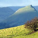 Chrome Hill from Pilsbury by Paul  Green