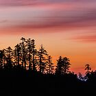 ucluelet sunrise by maria miller