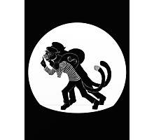 Cat Burglar Photographic Print