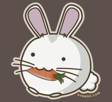 Fuzzballs Bunny Carrot Kids Clothes
