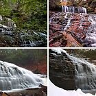 Mohawk Falls In Every Season by Gene Walls