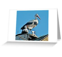 Storks on the Roof Greeting Card