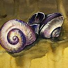 Snail Shells by Brittany LeBold