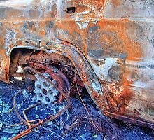 Burnt Out - HDR by Colin J Williams Photography