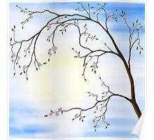 Cherry Blossom art photo print Poster