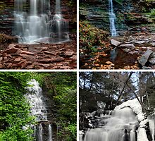 Ganoga Falls In Every Season by Gene Walls