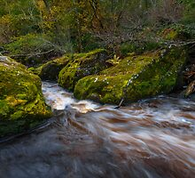 Roslin glen by Graeme  Ross