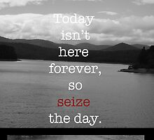 Seize the Day by HenryBourke767