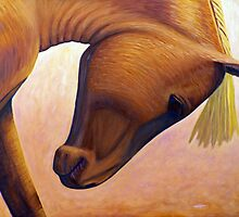 Just Plain Horse Sense by Brian Commerford