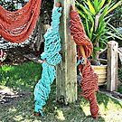Hammocks for Sale by Monnie Ryan