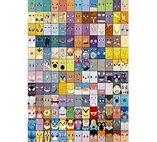 Original Kanto 151 First Generation Poster Photographic Print