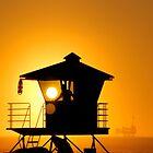 Huntington Beach Sunset by Tammy  (Robison)Espino