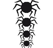 Spider Pattern Design by Style-O-Mat
