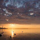 Good Morning, Toronto! by Georgia Mizuleva