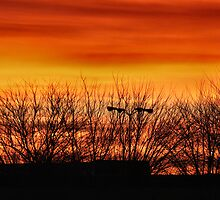 Orange Dawn in Iowa USA by Keala