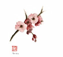 Cherry Blossom Sakura Pink Tree Delicate White Flower Flowers Branch Watercolor Painting by Johana Szmerdt