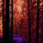 Night Fire by Nev3r