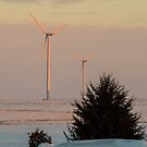 Windmills at Dawn by Deb Fedeler