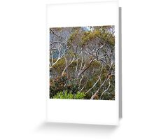 Only Natural Greeting Card