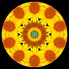 Sunflower Kaleidoscope by fantasytripp