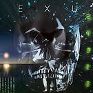 NEXUS by shadowlea