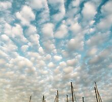 Cotton Ball Clouds by Lynnette Peizer